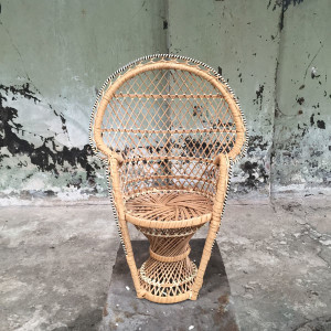 Mini peacock chair - L