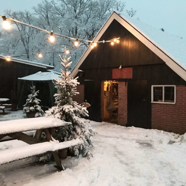 Winter Glow 2017